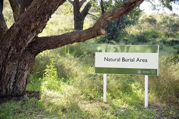 Natural Burial Area at Pinnaroo Valley
