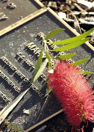 Garden ground niche plaque and bottlebrush flower